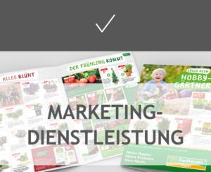 Marketingdienstleistung